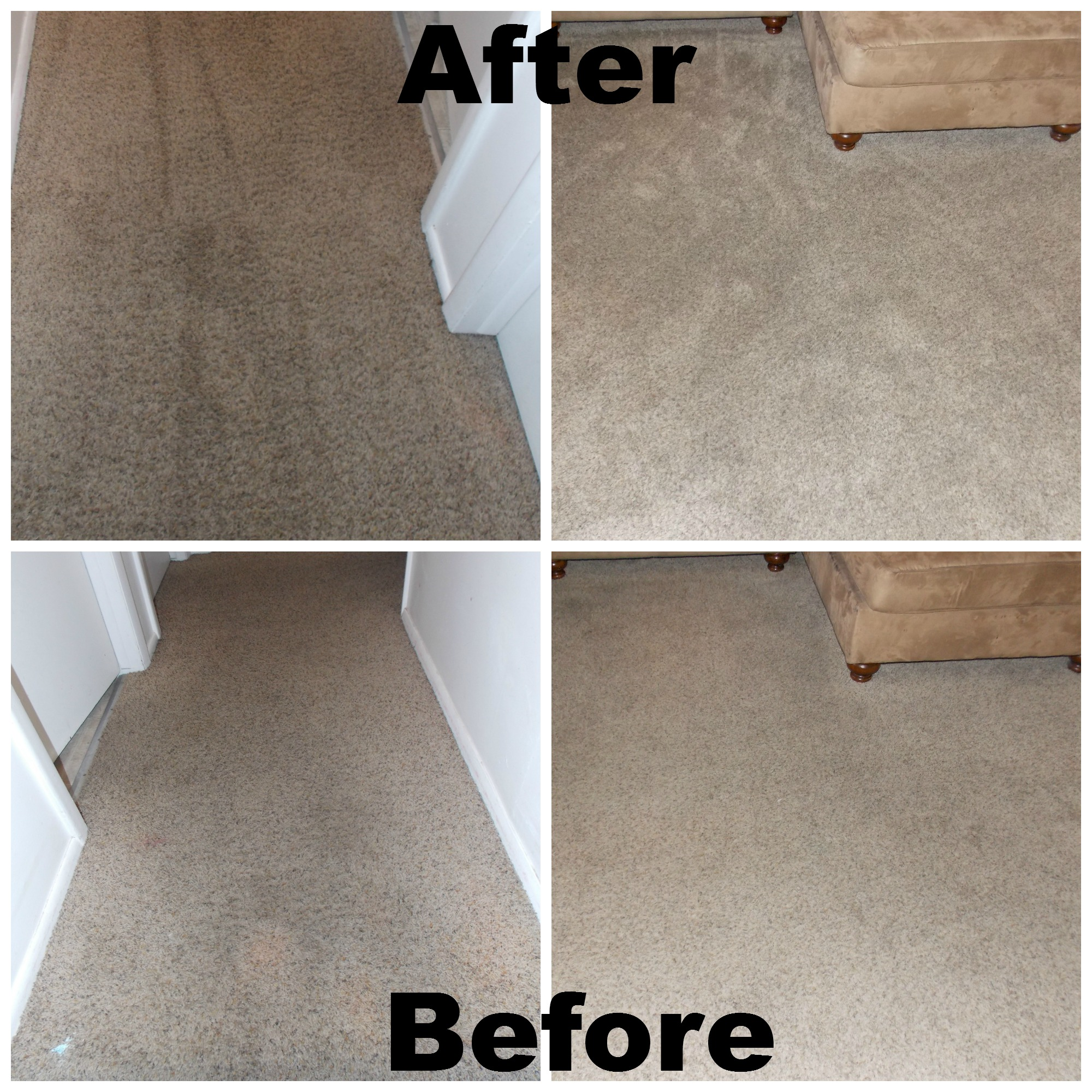Awesome Carpet Cleaning From Ecocarpet Utah Discount