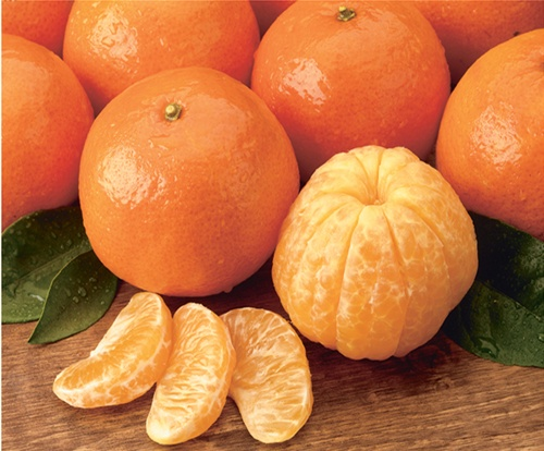 christmas orange - Christmas Oranges